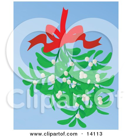 Bundle of Mistletoe Hanging From a Red Bow Posters, Art Prints