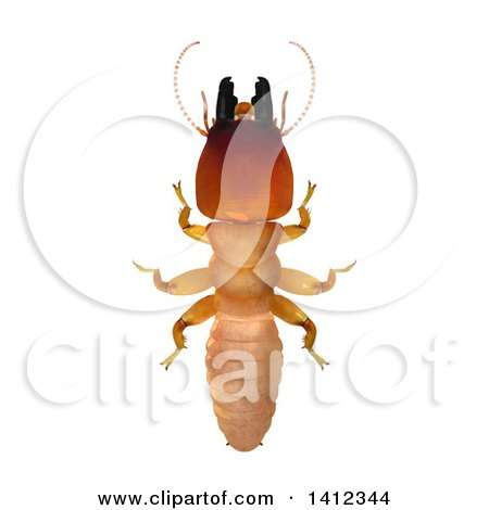 Clipart of a 3d Termite Soldier from Above - Royalty Free Illustration by Leo Blanchette