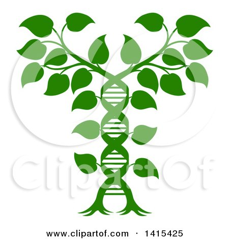 Clipart Of A Silhouetted Green Plant Forming A Dna Caduceus Royalty Free Vector Illustration