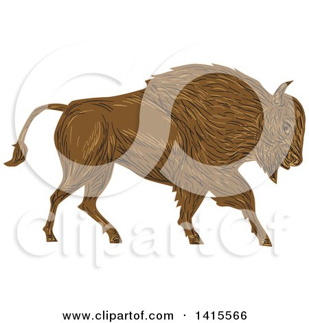 Clipart of a Sketched Charging Angry Bison in Profile - Royalty Free Vector Illustration by patrimonio