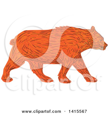 Clipart of a Sketched American Black Bear Walking - Royalty Free Vector Illustration by patrimonio
