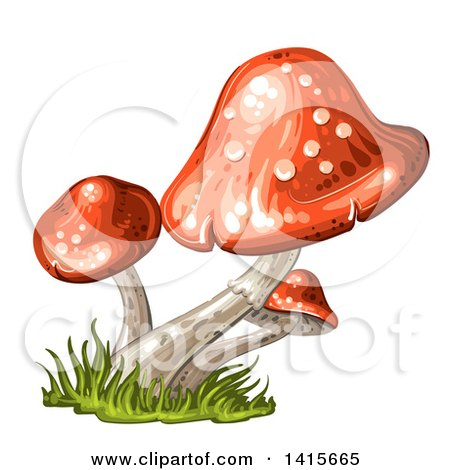 Clipart of a Group of Mushrooms - Royalty Free Vector Illustration by merlinul