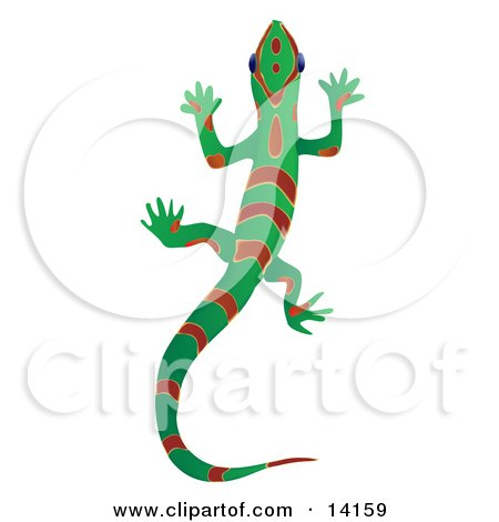free gecko stained glass pattern