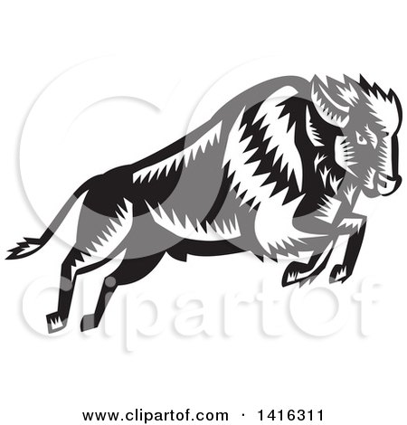 Clipart Of A Black And White Retro Woodcut Leaping And Running Buffalo Royalty Free Vector Illustration