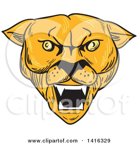 Clipart of a Sketched Angry Cougar Puma Mountain Lion Head - Royalty Free Vector Illustration by patrimonio