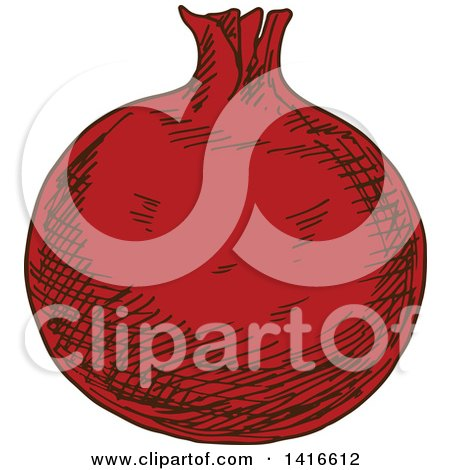 Clipart of a Sketched Pomegranate - Royalty Free Vector Illustration by Vector Tradition SM