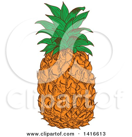 Clipart of a Sketched Pineapple - Royalty Free Vector ...