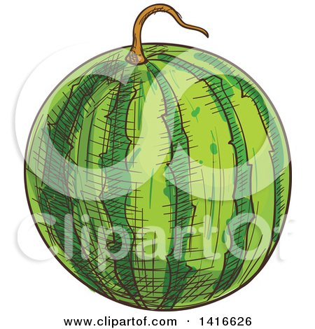 Clipart of a Sketched Watermelon - Royalty Free Vector Illustration by Vector Tradition SM