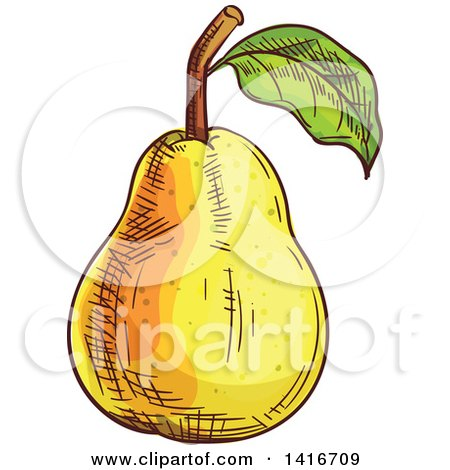Clipart of a Sketched Pear - Royalty Free Vector Illustration by Vector Tradition SM