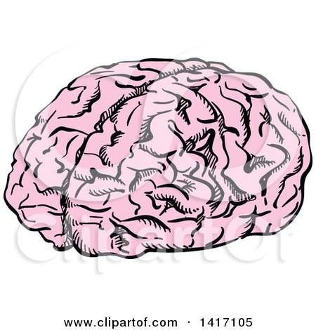 Clipart of a Sketched Human Brain - Royalty Free Vector Illustration by Vector Tradition SM