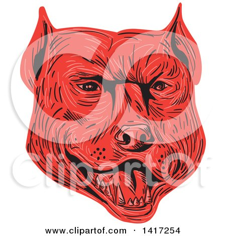 Clipart of a Sketched Red Angry Pitbull Dog Head - Royalty Free Vector Illustration by patrimonio