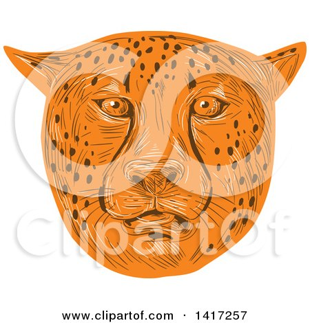 Clipart of a Sketched Cheetah Face - Royalty Free Vector Illustration by patrimonio