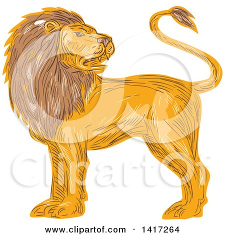 Clipart of a Sketched Male Lion Looking Back over His Shoulder - Royalty Free Vector Illustration by patrimonio