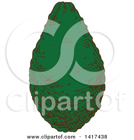 Clipart of a Sketched Avocado - Royalty Free Vector Illustration by Vector Tradition SM