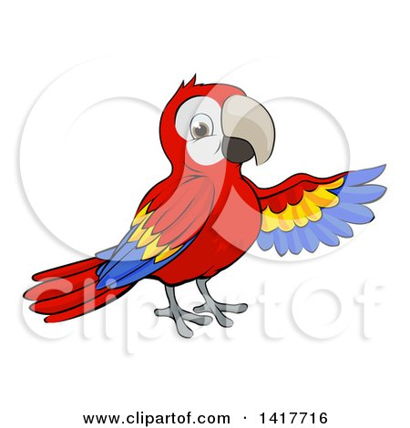 Clipart Of A Cartoon Scarlet Macaw Parrot Presenting To The Right Royalty Free Vector Illustration