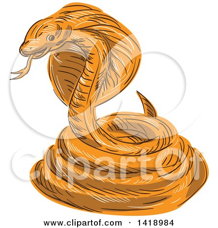 Clipart of a Sketched Orange Coiled Cobra Viper Snake - Royalty Free Vector Illustration by patrimonio