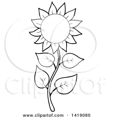 Clipart Of A Black And White Lineart Sunflower