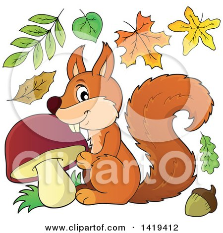 Clipart of a Happy Squirrel with a Mushroom with Autumn Leaves - Royalty Free Vector Illustration by visekart