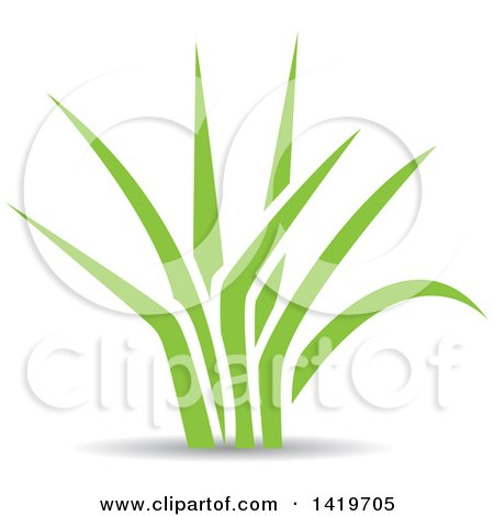Clipart of Green Leaves - Royalty Free Vector Illustration by cidepix