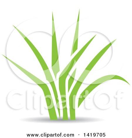 Green Leaves Posters, Art Prints