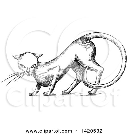 Clipart of a Sketched Black and White Cat - Royalty Free Vector Illustration by Vector Tradition SM