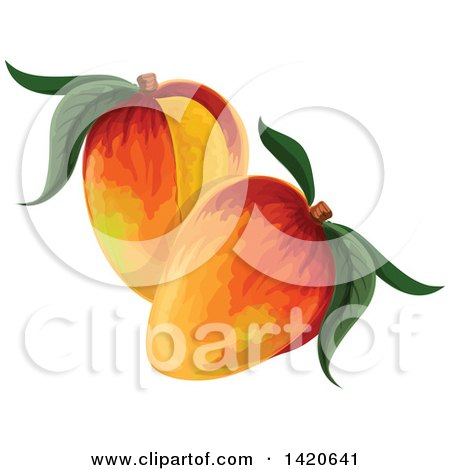 Clipart of Mangoes - Royalty Free Vector Illustration by Vector Tradition SM
