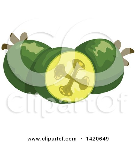 Clipart of Feijoa Pineapple Guavas - Royalty Free Vector Illustration by Vector Tradition SM