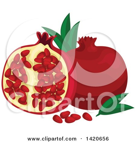 Clipart of Pomegranates, Leaves and Seeds - Royalty Free Vector Illustration by Vector Tradition SM