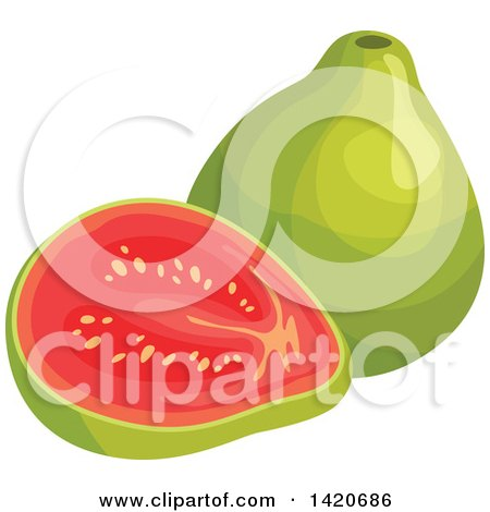 Clipart of Guavas - Royalty Free Vector Illustration by Vector Tradition SM