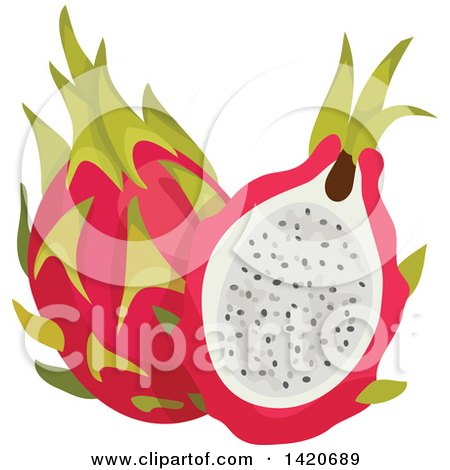 Clipart of Dragon Fruits - Royalty Free Vector Illustration by Vector Tradition SM