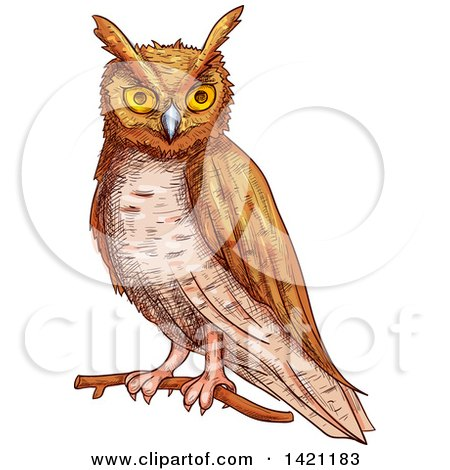 Clipart of a Sketched and Color Filled Owl - Royalty Free Vector Illustration by Vector Tradition SM