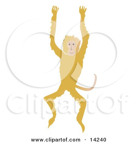 Happy Monkey Jumping Up and Down Posters, Art Prints