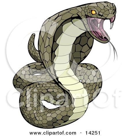 Vemomous and Defensive Green Cobra Snake Preparing to Attack Clipart Illustration by AtStockIllustration