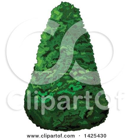 Clipart of a Pyramidical Shaped Shrub or Tree - Royalty Free Vector Illustration by Pushkin