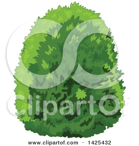 Clipart of a Lush Green Bush - Royalty Free Vector Illustration by Pushkin