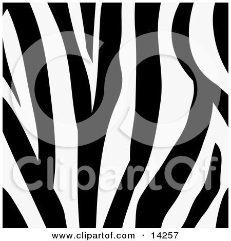 Royalty-free background clipart picture of a zebra animal print with black