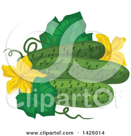 Clipart of a Leaf, Blossoms and Cucumbers - Royalty Free Vector Illustration by Vector Tradition SM