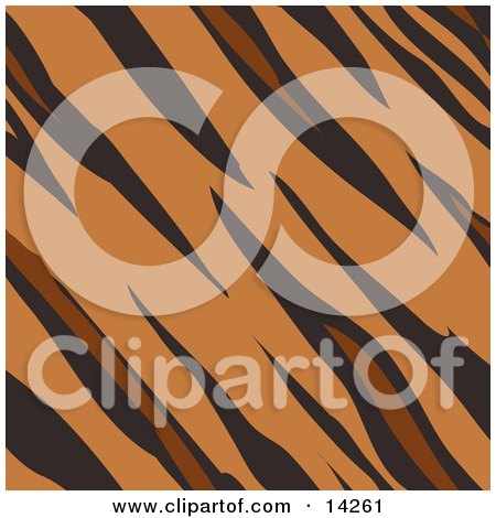 Tiger Animal Print Background With Brown, Tan and Black Stripes in a Pattern Clipart Illustration by AtStockIllustration
