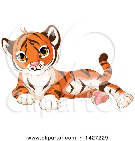 Clipart of a Cute Adorable Baby Tiger Cub Resting - Royalty Free Vector Illustration by Pushkin