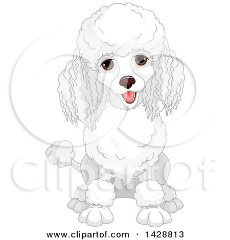 Clipart of a Cute Happy White Poodle Dog Sitting - Royalty Free Vector Illustration by Pushkin