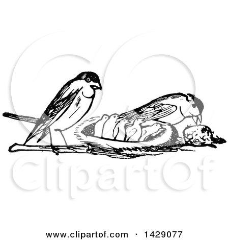 Clipart of a Vintage Black and White Bird Family with the Parents Feeding the Chicks - Royalty Free Vector Illustration by Prawny Vintage