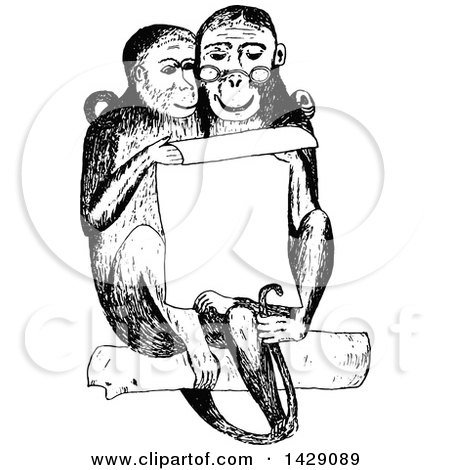 Clipart of a Vintage Black and White Sketched Monkey Couple Reading a Notice - Royalty Free Vector Illustration by Prawny Vintage