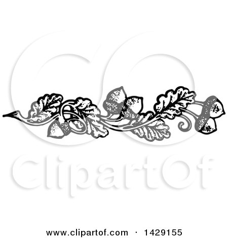 Clipart of a Vintage Black and White Acorn and Oak Leaf Border - Royalty Free Vector Illustration by Prawny Vintage