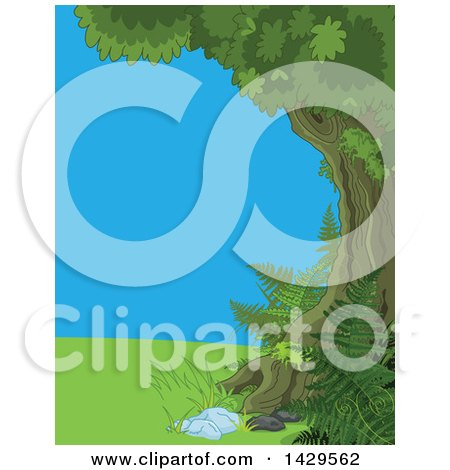 Clipart of a Border of a Mature Tree and Ferns, Grass and Blue Sky - Royalty Free Vector Illustration by Pushkin