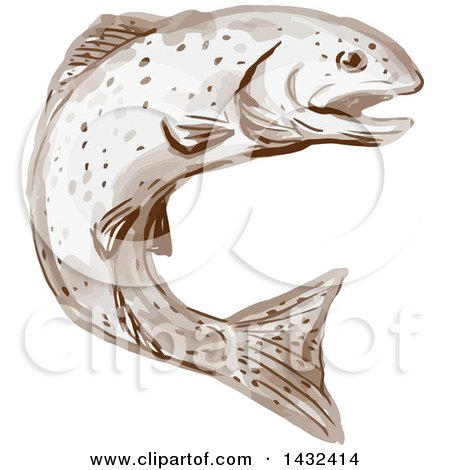 Clipart of a Watercolor Rainbow Trout Fish Jumping - Royalty Free Vector Illustration by patrimonio