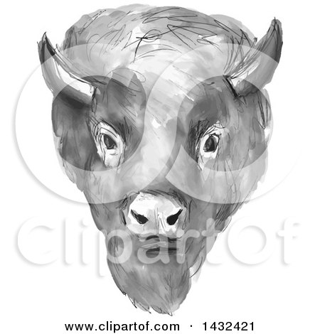 Clipart of a Gray Watercolor American Buffalo Bison Head - Royalty Free Vector Illustration by patrimonio