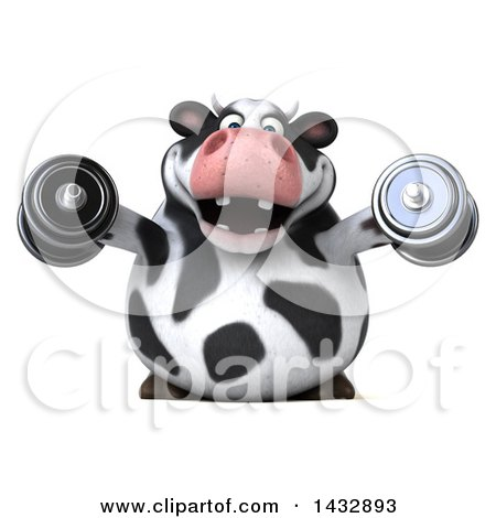 Clipart of a 3d Chubby Cow Working out with Dumbbells, on a White Background - Royalty Free Illustration by Julos