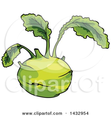 Clipart of a Cartoon Kohlrabi - Royalty Free Vector Illustration by Vector Tradition SM