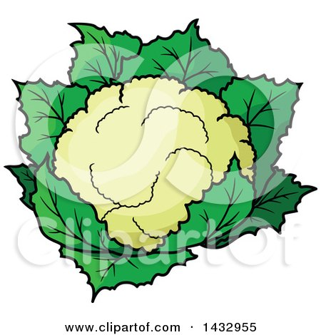 Clipart of a Cartoon Head of Cauliflower - Royalty Free Vector Illustration by Vector Tradition SM