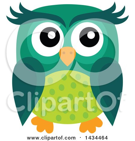 Clipart of a Green Owl - Royalty Free Vector Illustration by visekart